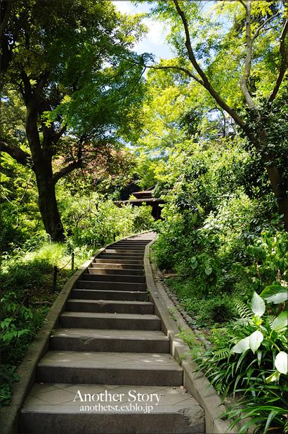 stairs     〜2〜_a0238574_20583616.jpg