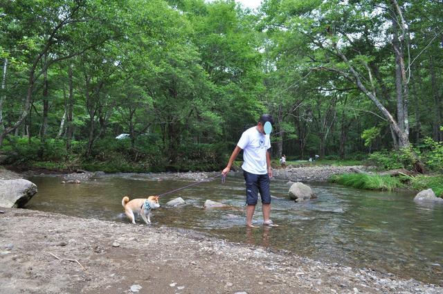 戸隠キャンプ2012 4日目_a0126590_613758.jpg