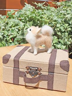 Mr.cinnamon II_f0170352_11543730.jpg