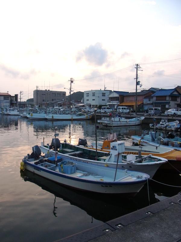 曇り空ながら歩いて行った、田辺の江川もいい港。_a0086270_9591335.jpg