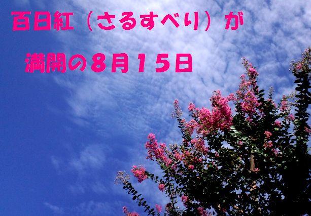 c0025171_647150.jpg