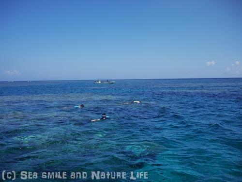 プールのような海で♪_a0155606_22255085.jpg