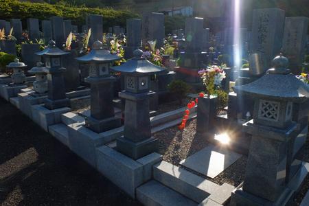 お墓参り_a0097735_19483722.jpg