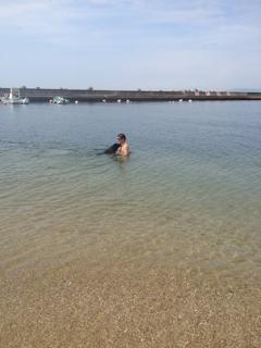 遊泳ゴマ_d0190041_17183082.jpg