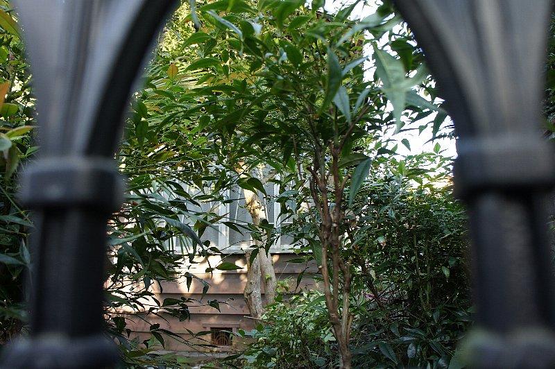 京都のK邸_c0112559_12462850.jpg