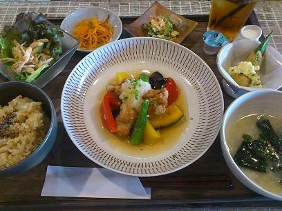 夏野菜と大豆ミートのみぞれあえ_d0237564_11283463.jpg