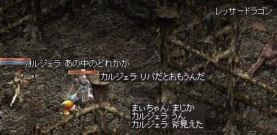 a0201367_081828.jpg