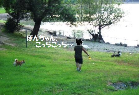 c0171368_20545958.jpg