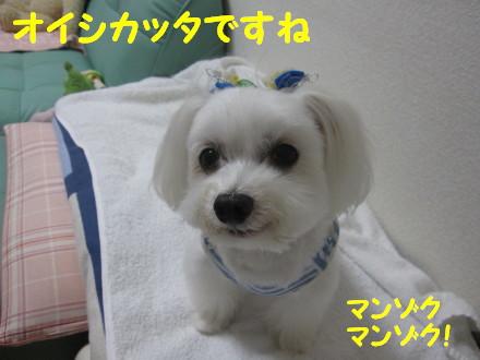 b0193480_1436209.jpg