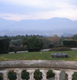 ルッカ 回想記 サンマルティーノ農園訪問_a0154793_14383399.jpg