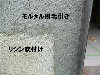 b0003400_1124487.jpg