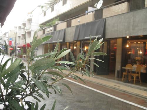 雨の日_a0222424_11393694.jpg