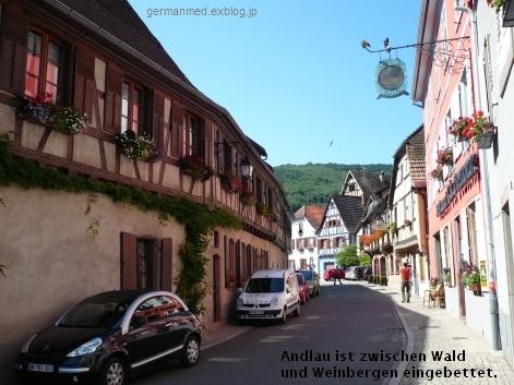 ワイン街道のくまの村、Andlau_d0144726_4401426.jpg