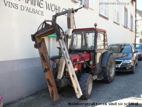 ワイン街道のくまの村、Andlau_d0144726_441174.jpg