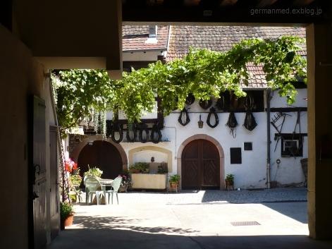 ワイン街道のくまの村、Andlau_d0144726_44148100.jpg