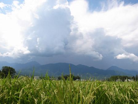 雲は多く_a0014840_20274345.jpg