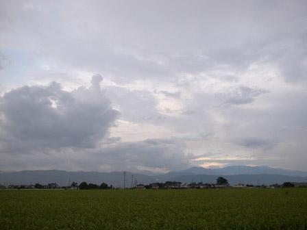 夏は夕立といいますが_a0014840_2053633.jpg
