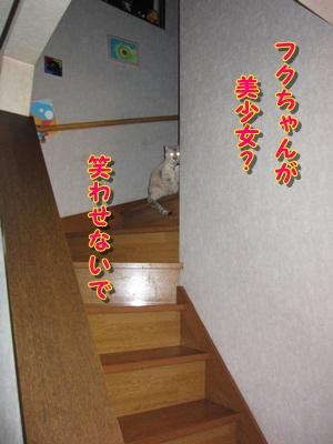 b0151748_20143879.jpg
