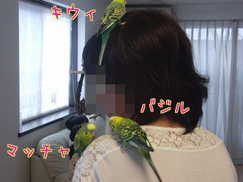f0196665_2361014.jpg