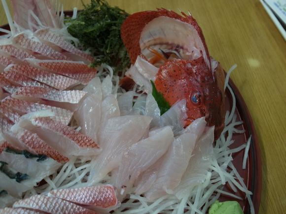 沖縄お魚の旅 その2 ~アカジンミーバイ~ 120810、12_c0237483_176132.jpg
