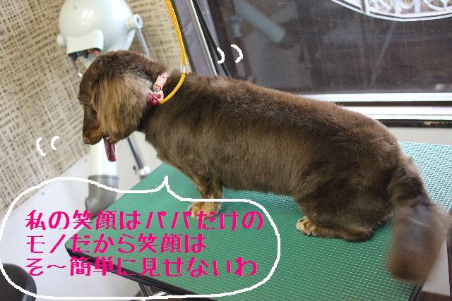 こんにちわぁ~~!!_b0130018_1450494.jpg