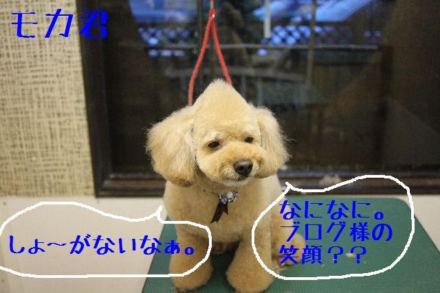 こんにちわぁ~~!!_b0130018_1841463.jpg