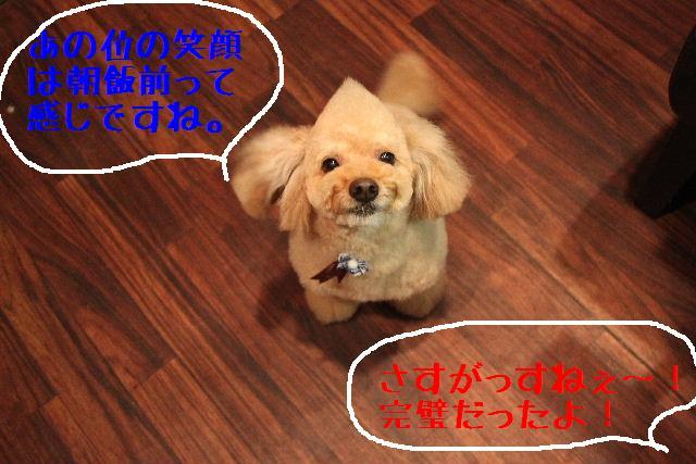 こんにちわぁ~~!!_b0130018_1842915.jpg