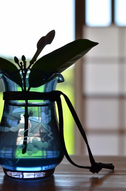 頂いたガラスの花瓶_b0146751_14432962.jpg