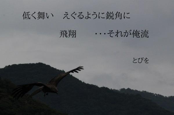 a0226853_15511452.jpg