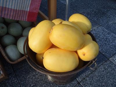 奈良オーガニックマーケット_b0252363_19402488.jpg