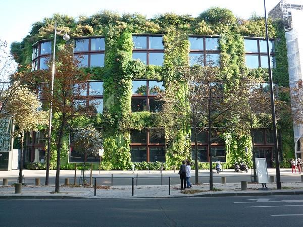 パリ : ケ・ブランリ美術館 Musée du quai Branly の非ヨーロッパ写真家展「フォトケ PHOTOQUAI」_e0152073_1249574.jpg