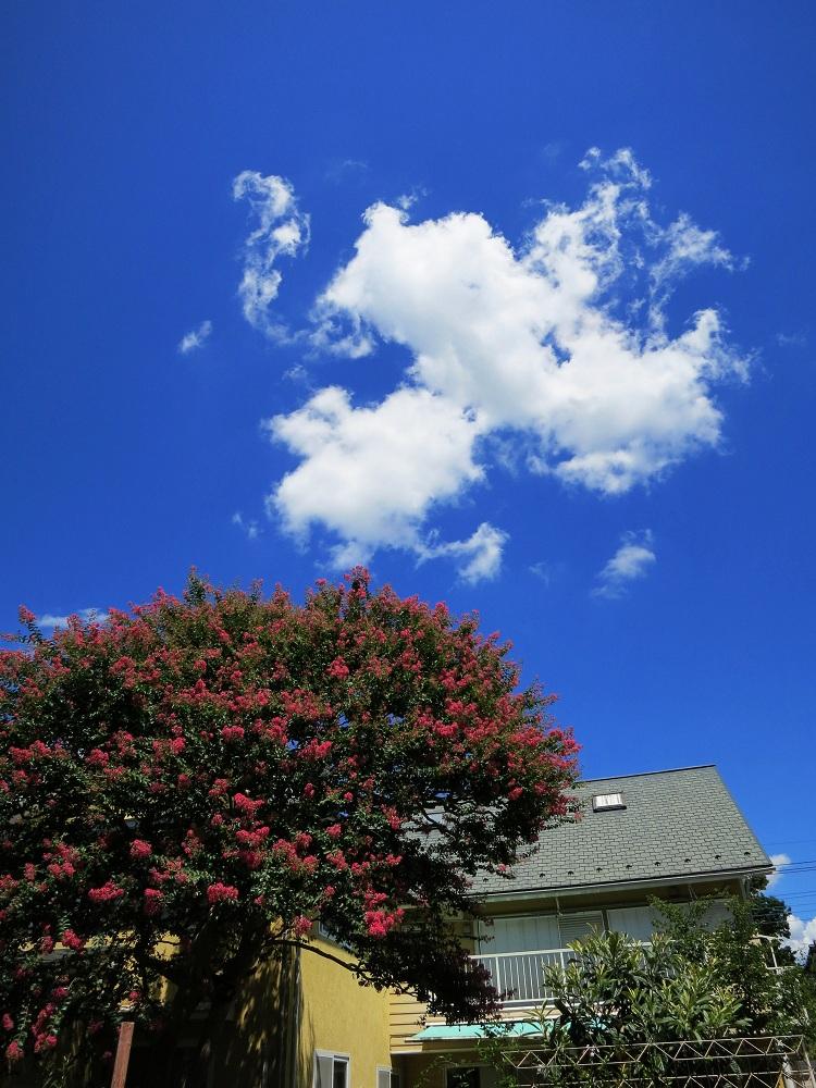夏休み気分が残っている晴れた夏の日_a0107574_12413346.jpg