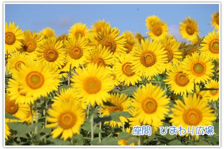 b0024183_15475716.jpg
