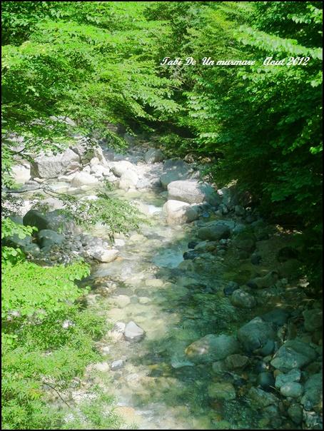 夏休みいただきました。_d0140490_18381394.jpg
