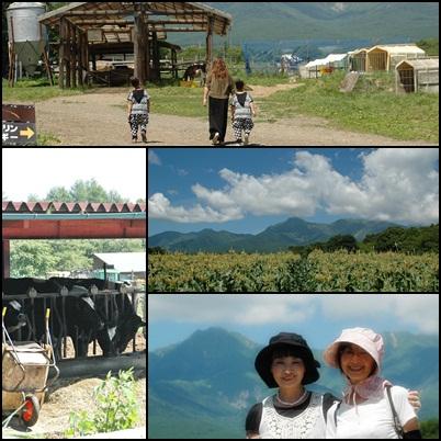 八ヶ岳高原の牧場_f0012718_2285083.jpg