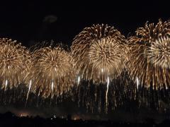 「原発」新潟県民投票 署名期間 残り2日!_d0235522_22102610.jpg