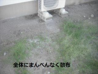 定期管理清掃のひとこま_f0031037_2142047.jpg