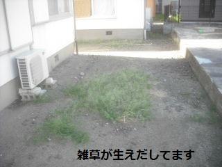 f0031037_2144599.jpg