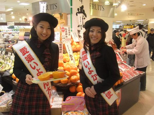 11日間のいよかん消費宣伝キャンペーン☆_c0238739_19582915.jpg