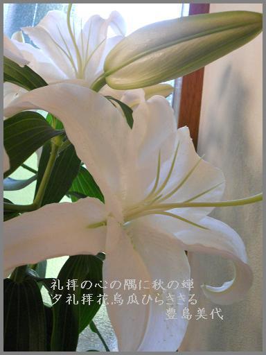 f0172744_83263.jpg