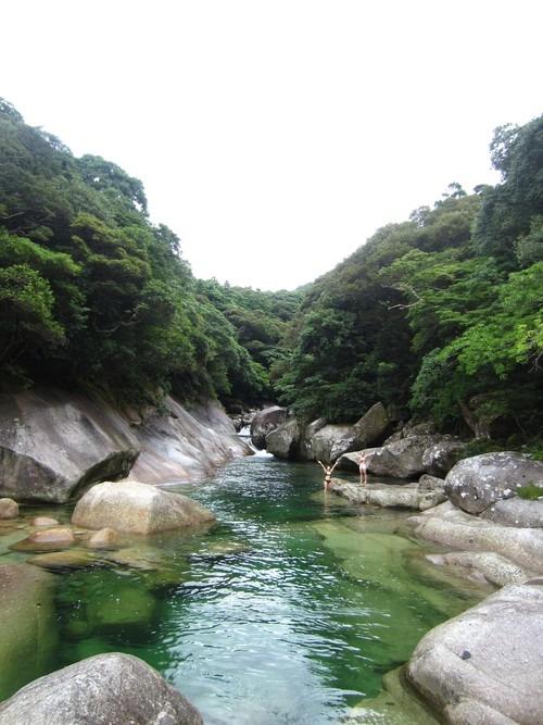 虹、滝、海、沢、森。_b0160957_13162713.jpg
