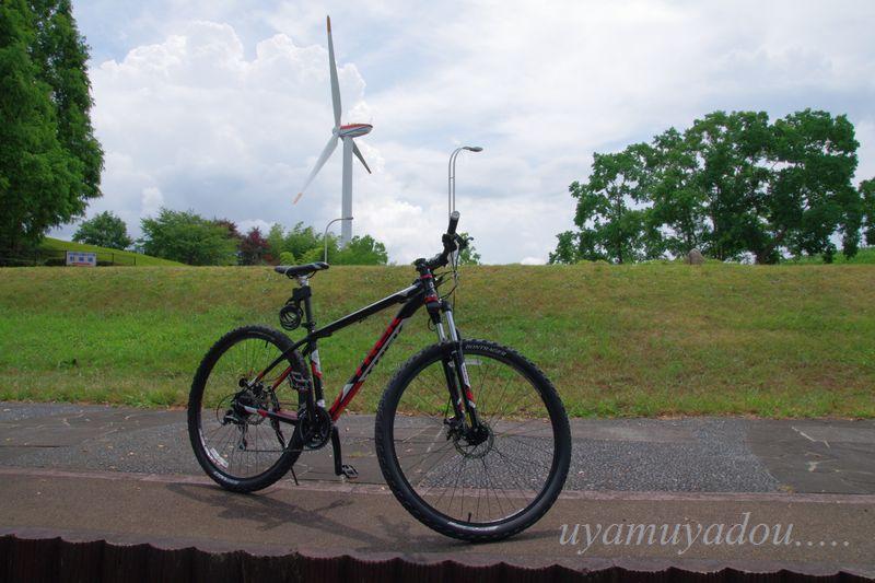 琵琶湖・自転車でおでかけ....._a0157263_22243862.jpg