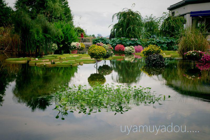 琵琶湖・自転車でおでかけ....._a0157263_2225028.jpg