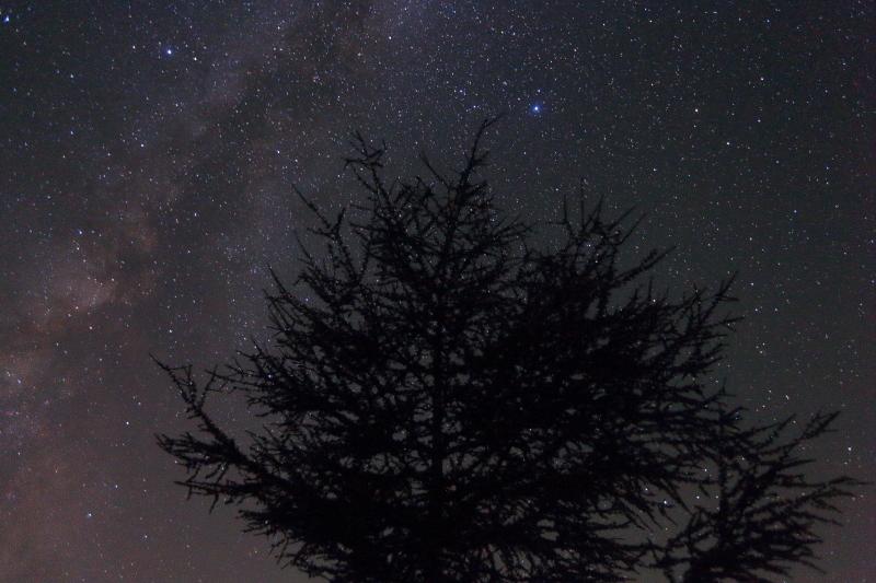 ペルセウス流星群の夜_e0183063_17131651.jpg
