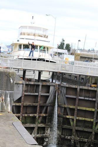 Seattle(6)Chittenden Locksチッテンデン水門_d0148902_23123475.jpg