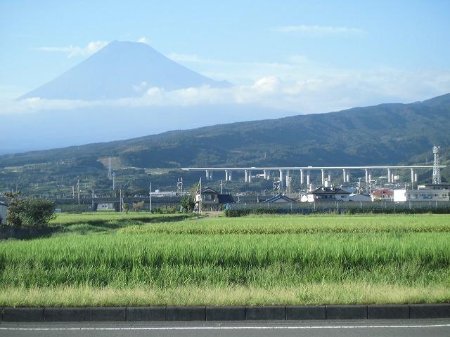浜岡原発県民投票に向けた富士市分の署名数が確定 「16,933人」_f0141310_7463456.jpg