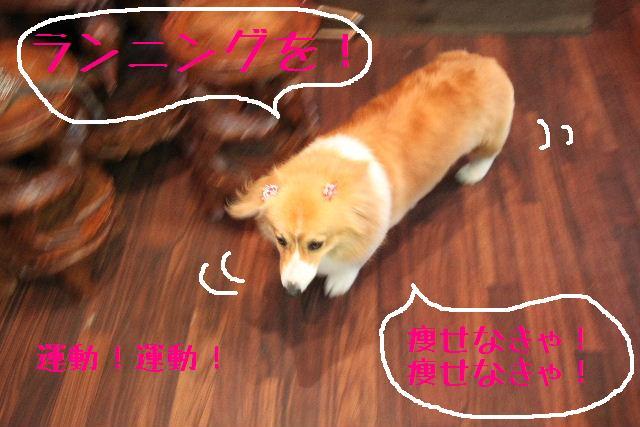 明日はお休みでぇ~す!!_b0130018_232322100.jpg