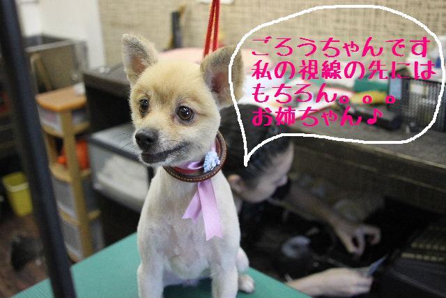明日はお休みでぇ~す!!_b0130018_23321173.jpg