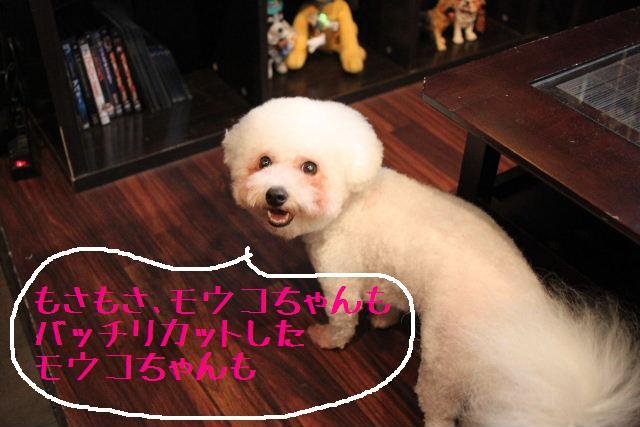 明日はお休みでぇ~す!!_b0130018_23365236.jpg