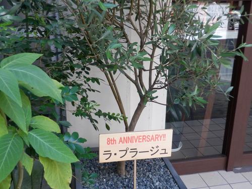 8周年&夏休み_c0247818_2227113.jpg